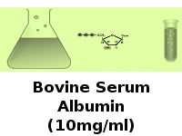 Bovine Serum Albumin (10mg/ml)