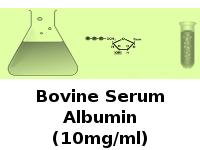 Bovine Serum Albumin (10mg/ml)